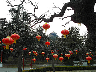 lanterns ready for Chinese New Year 2019