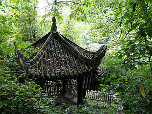 pavilion in woods around
