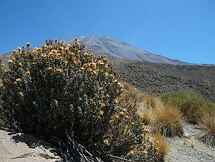 El Misti (5825m)