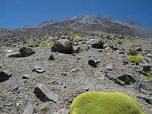 climbing up El Misti