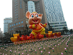 Happy New Year of Pig