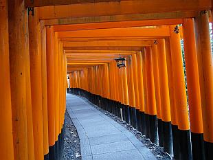 Fushimi Inari Taisha shrine gates I