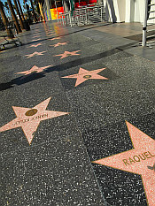 peopleless Hollywood Walk of Fame