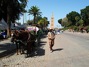 horse carriages and Koutoubia Minaret