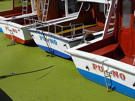 Puno boats on the Lake Titicaca