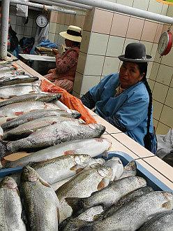 back in Puno, local market fishseller