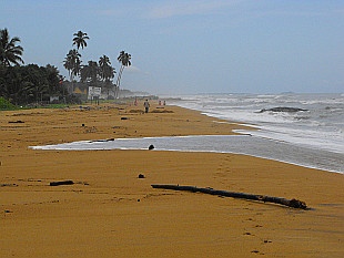 beach north of Kalutara city