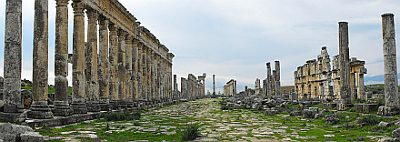 ancient Apamea - view towards the Central Column